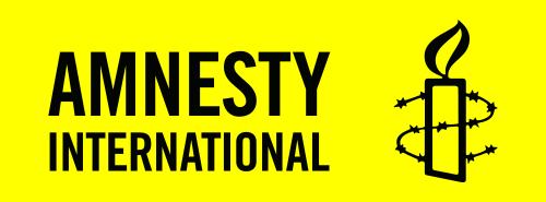 Amnesty_International_2008_logo.svg.png